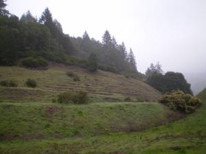 20081223_19